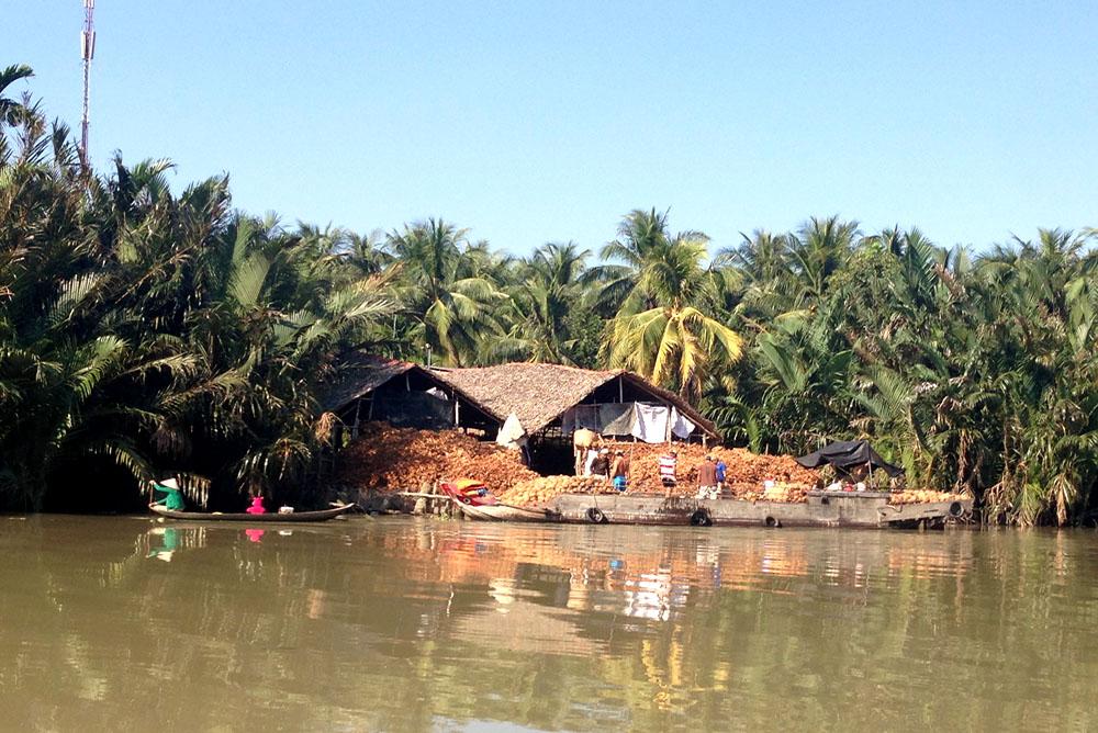 Vietnam-Guiding-Bentre-Coconut-homeland
