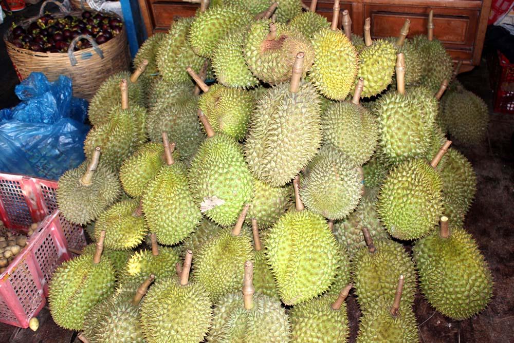 Vietnam-Guiding-Bentre-Durian-fruit