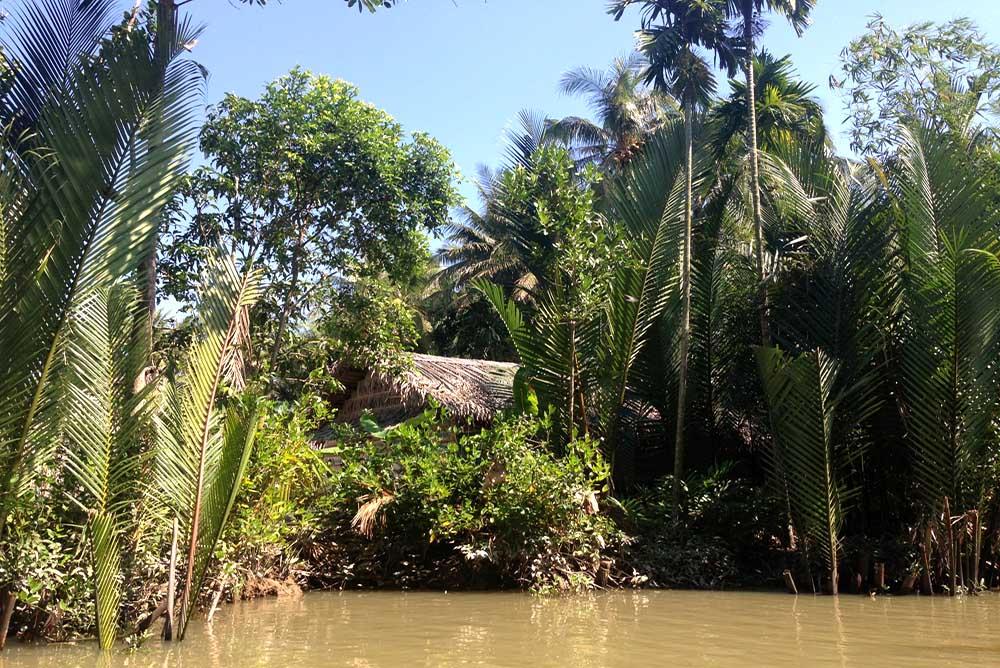 Vietnam-Guiding-Bentre-Jungle-Hut