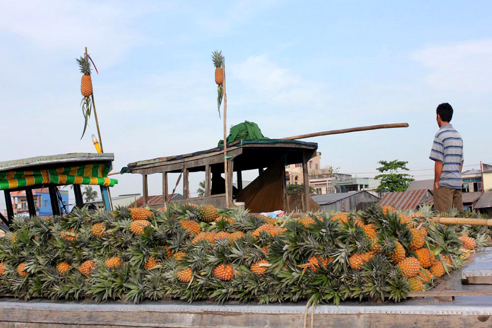 Pineapple Trading boat